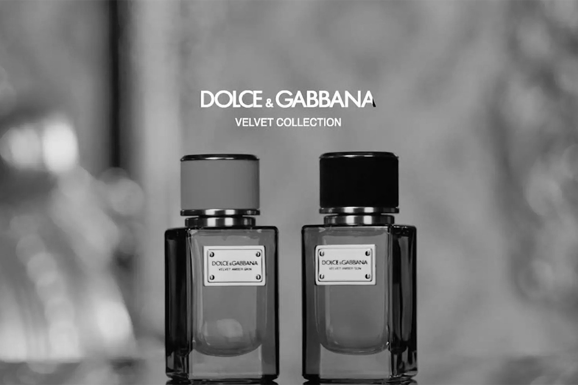 Dolce & Gabbana Velvet Collection